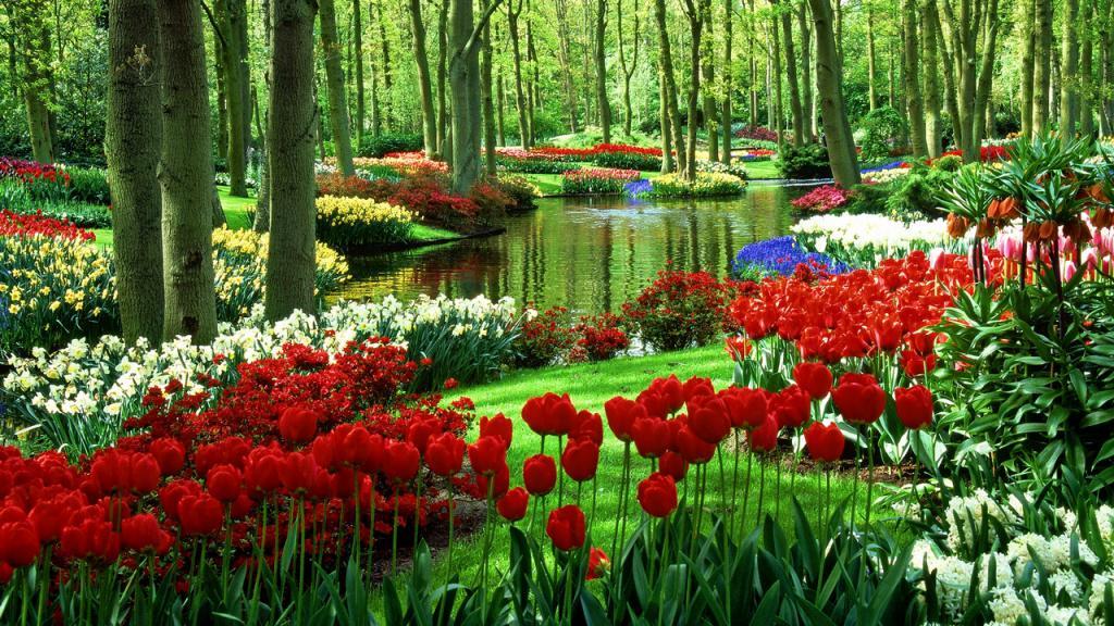 Wesoła dom i ogród ogłoszenia piękny dom ogród warszawa Wesoła ogłoszenia drobne dom i ogród Wesoła
