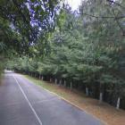 Ulica Graniczna w Starej Miłośnie - będzie przedłużenie